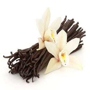 Le prix d'un plant de vanille Bourbon de Madagascar