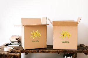 Les précautions à prendre lors de la livraison de la vanille de Madagascar