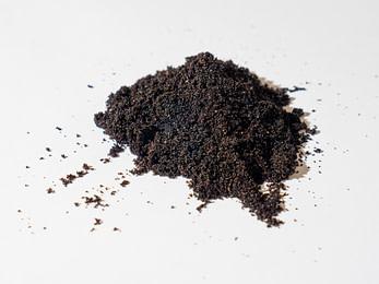 caviar de vanille