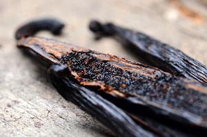 L'usage des graines de vanille de Madagascar