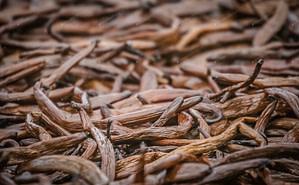 L'importation de la vanille de Madagascar vers l'Europe